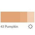 43 Pumpkin (warm)