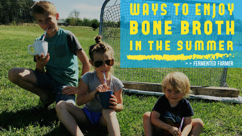 Ways to Have Bone Broth in the Summer - Fermented Farmer