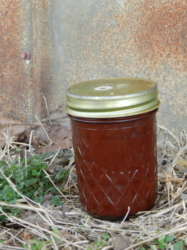 Lacto Fermented BBQ Sauce