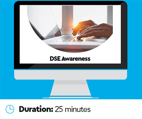 Display Screen Equipment (DSE) Online Training