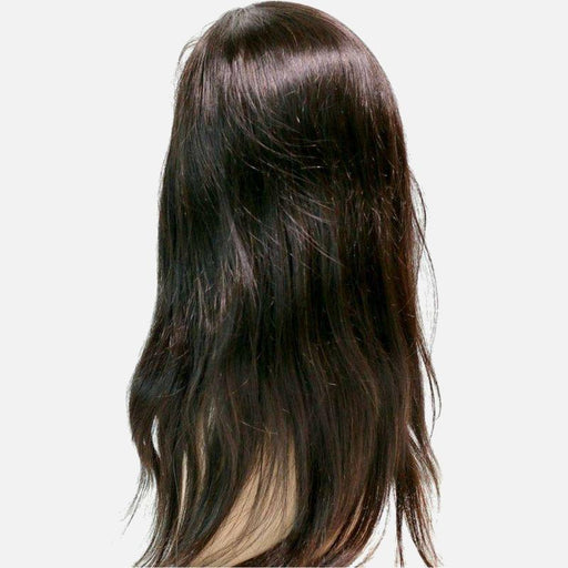 Brazilian Silky Straight Front Lace Wig-Wigs-Daze Hair Extensions