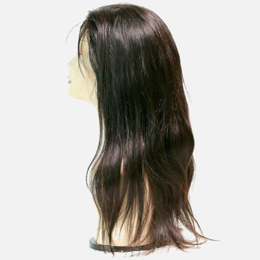 Brazilian Silky Straight Full Lace Wig-Wigs-Daze Hair Extensions