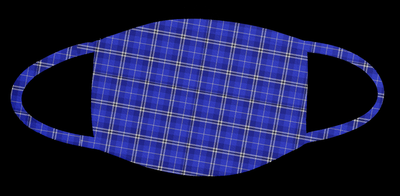 7.  Blue Plaid Mask