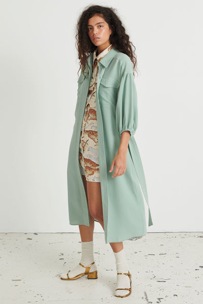 Iris Dress Pure Mint
