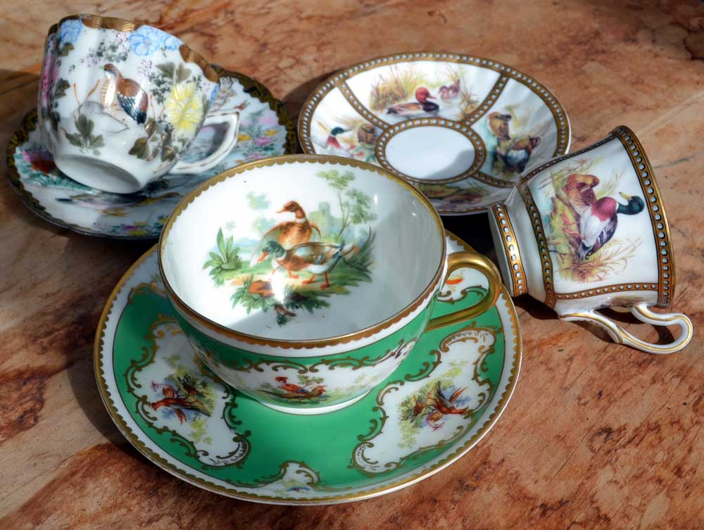 Beautiful birds tea cup collection