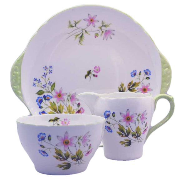 shelley bone china