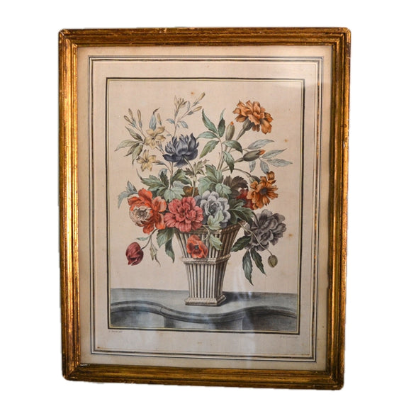 Antique Framed Hand Coloured Engraving after Louis Tessier