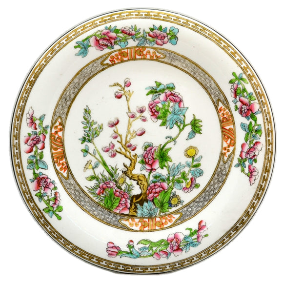 Antique Coalport China Indian Tree Dinner Plate