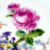 detail of the plate design on antique china