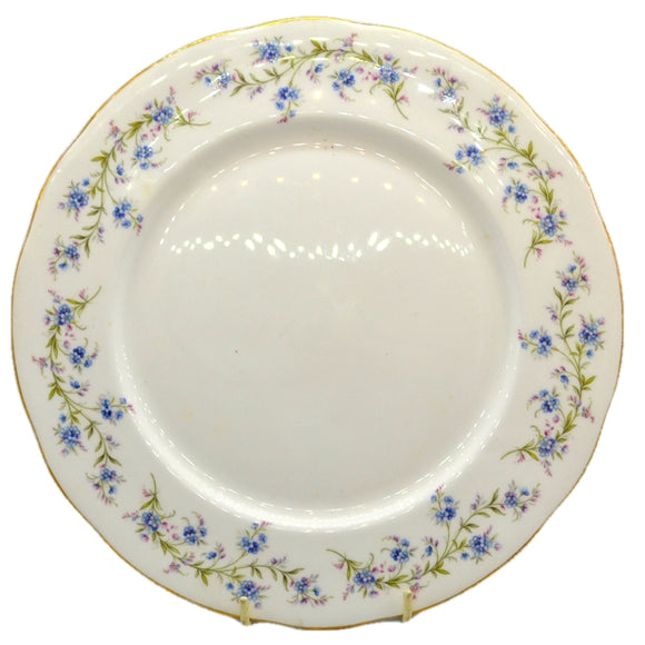 Duchess china tranquillity dinner plates