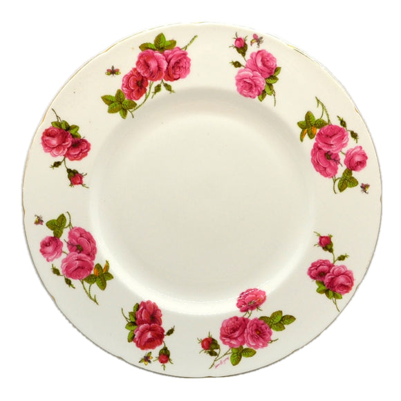 Vintage Elijah Bain Foley Bone China dinner plate