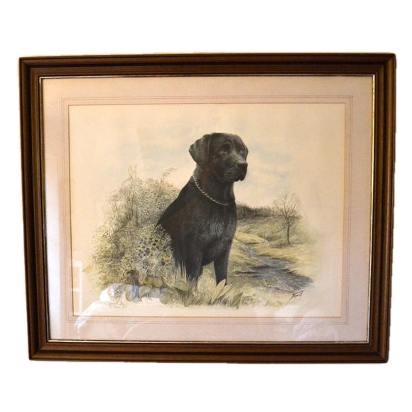 lack Labrador Limited edition Print James Rowley