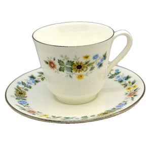 Royal Doulton Pastorale China Teacup and Saucer