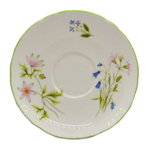 Shelley china wild anemone saucers