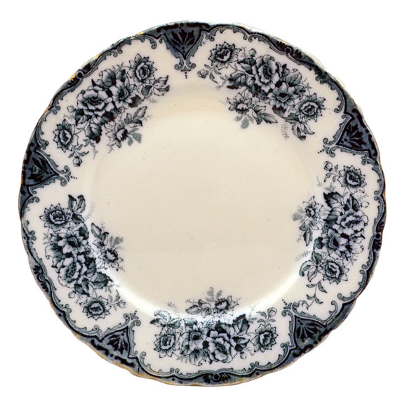 T Rathbone & Co Pottery Clyde Plate Antique Blue and White China