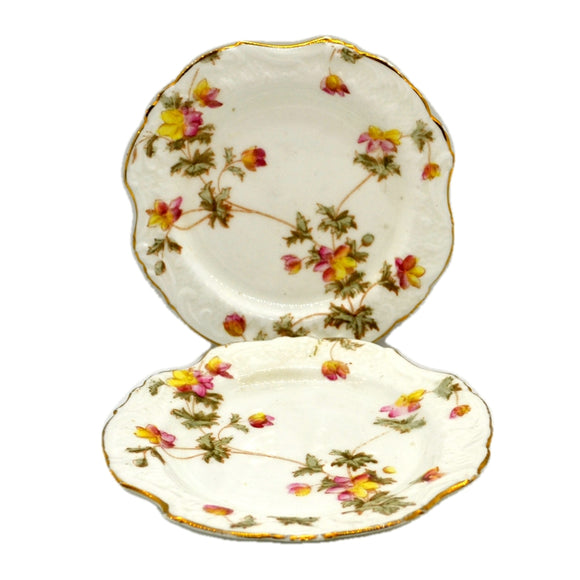 Antique William A Adderley & Co Floral China Side Plates Spray No30