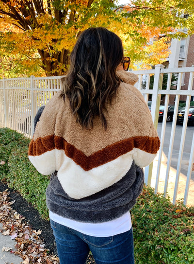 Larchmont Teddy Bomber