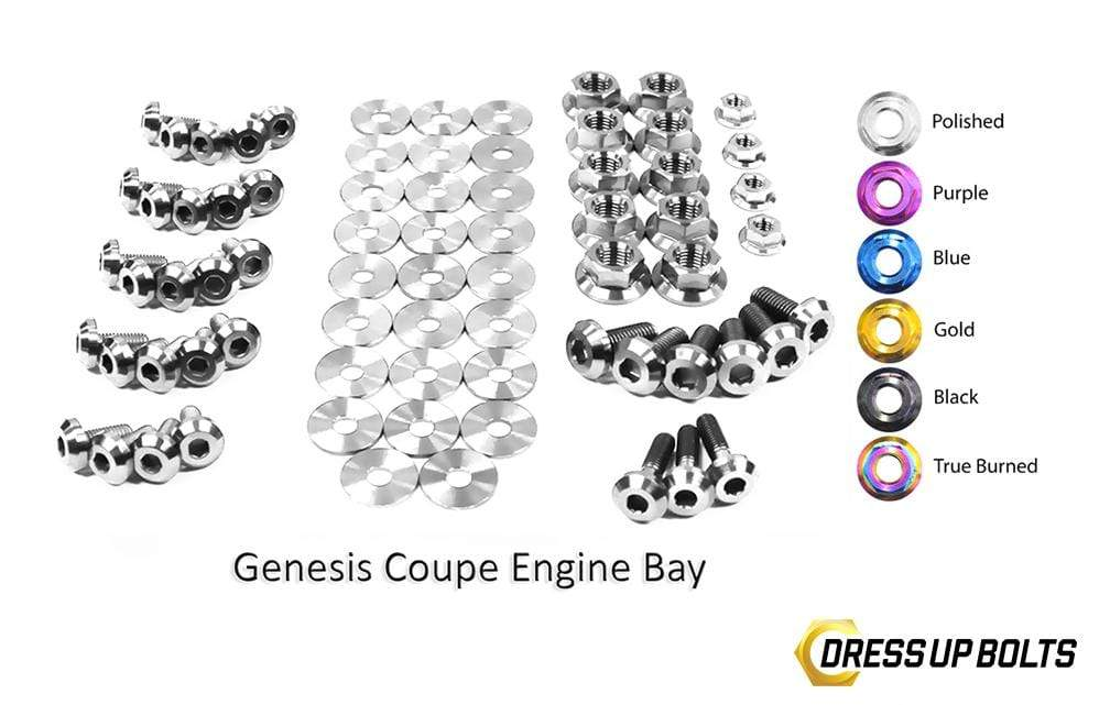 Hyundai Genesis Coupe (2009-2016) BK Titanium Dress Up Bolts Full Engine Bay Kit - DressUpBolts.com