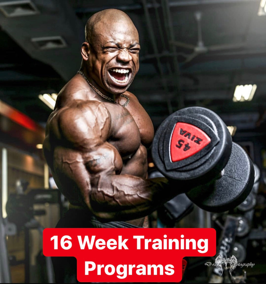 16 Week Training Program