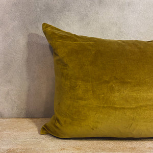 Load image into Gallery viewer, Gold Vera Velvet Pillow