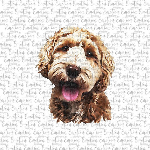 Labradoodle - Heat Transfer/Sublimation Transfer