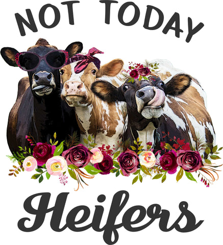 Not Today Heifers - Heat Transfer/Sublimation Transfer