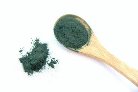 Spirulina powder in small wooden scoop