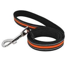 Load image into Gallery viewer, Reflective Dog Leash - Urban Pets