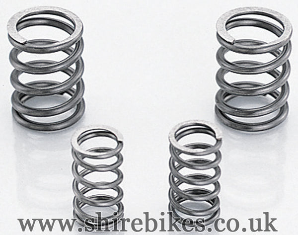 Kitaco Valve Spring Set for SE Head