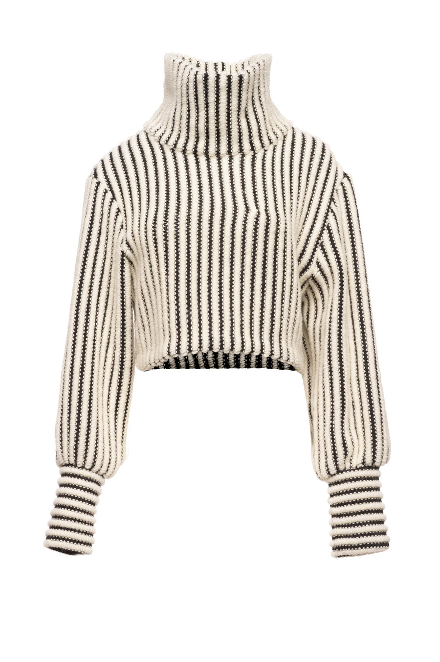 Cropped 3D Knit Turtle Neck Sid Neigum Off Figure