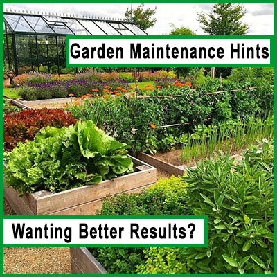 Helping Gardeners Get The Best Results
