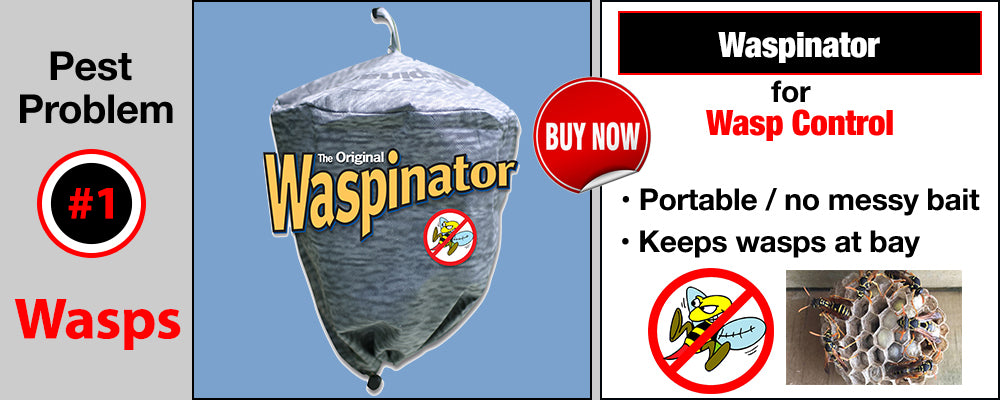 Wasps Can be Kept at Bay with the mobile Waspinator.
