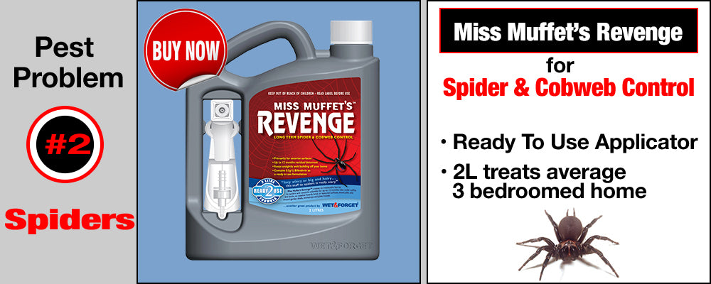 Miss Muffet's Revenge for Spider Control
