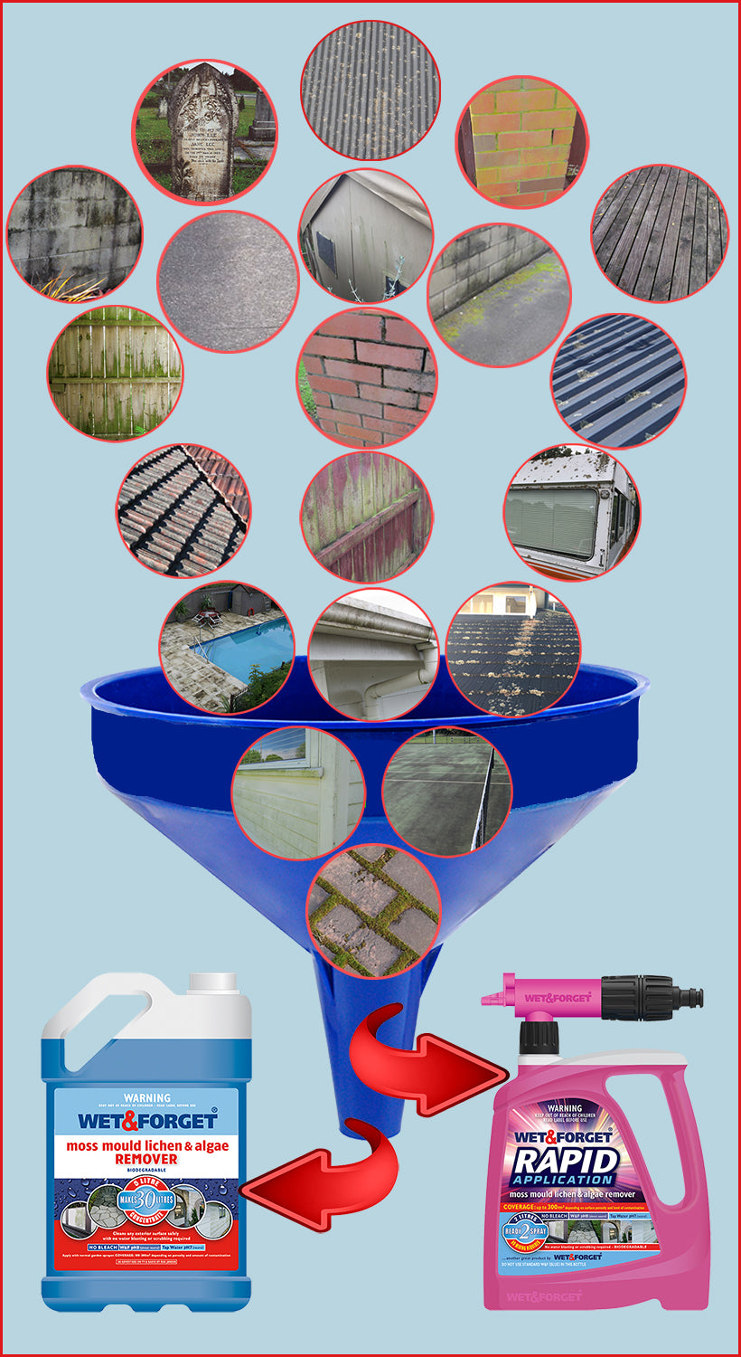 Remove Moss and Mould and Lichen with Wet & Forget Products You Can Trust