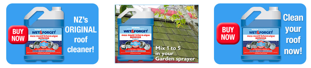 Buy Wet and Forget to Clean Your Roof - Just Need a Garden Sprayer