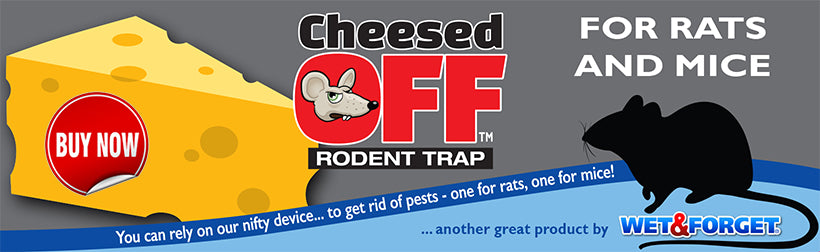 Buy a Cheesed Off Rodent Trap Now