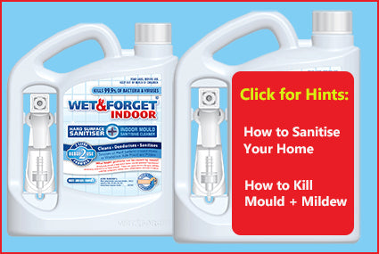How To Sanitise Your Home + How To Kill Indoor Mould & Mildew with Wet & Forget's INDOOR