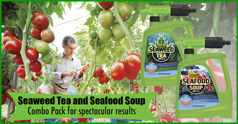https://www.wetandforget.co.nz/products/seaweed-tea-and-seafood-soup-organic