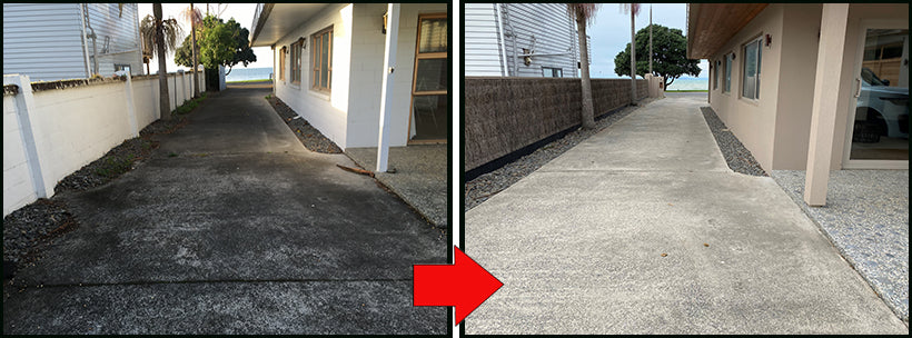 See How Rapid Application Cleaned the Black Fungi From this Driveway