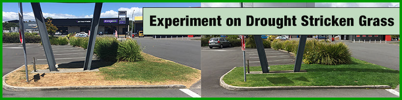 See How these products have improved the quality of the grass during a drought
