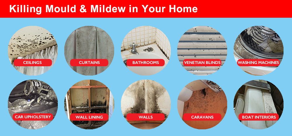 Wet & Forget's Indoor Kills Indoor Mould and Mildew