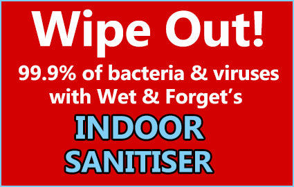 Wipe Out Bacteria and Viruses With Wet & Forget Indoor