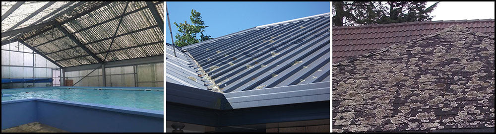 Getting Rid Of Lichen on Roofs