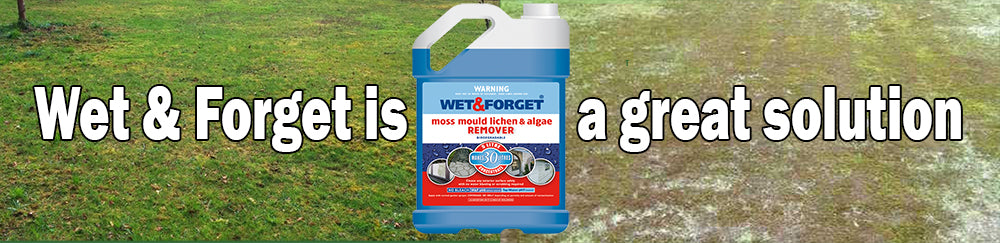 Wet and Forget helps moss in your lawn
