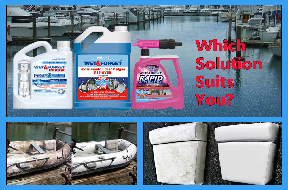 Mould and Mildew on Your Boat is a Major Issue