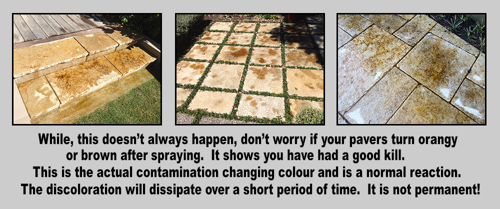 Don't Worry if Your Pavers Go Brown After Spraying With Wet & Forget