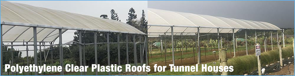 Polyethylene Clear Plastic Roofs for Tunnel Houses