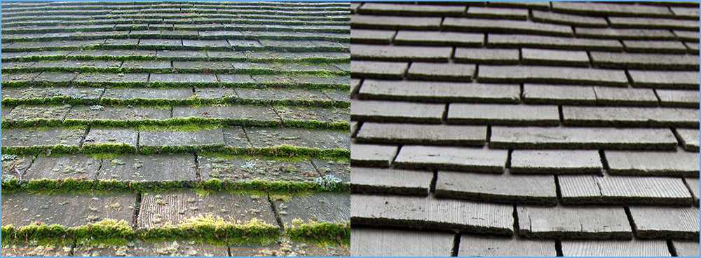 Cedar Shingles are easy to Clean with Rapid Application or Wet & Forget