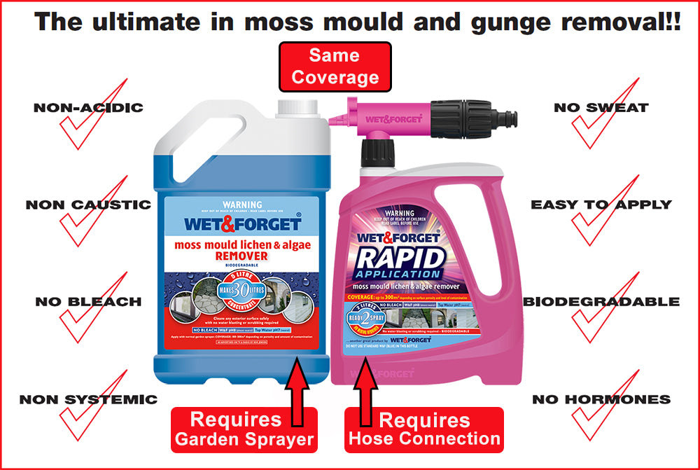 Choose the Product that Suits you for Moss Mould and Lichen Removal