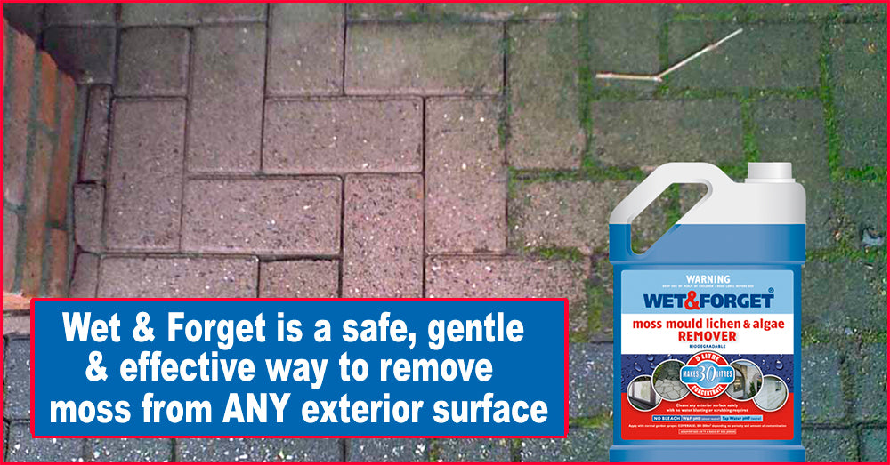 Moss Removal is Easy With Wet And Forget Moss and Mould Removal